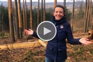 Soňa Jonášová (Institut cirkulární ekonomiky): Vyhlasme nouzový stav českého lesnictví